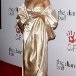 Rihanna 2nd Annual Diamond Ball 136