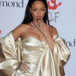 Rihanna 2nd Annual Diamond Ball 41