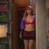 The Big Bang Theory The Plimpton Stimulation 1