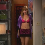 The Big Bang Theory The Plimpton Stimulation 2