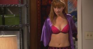 The Big Bang Theory The Plimpton Stimulation