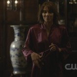 The Vampire Diaries The Sacrifice 16