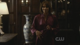The Vampire Diaries The Sacrifice 16