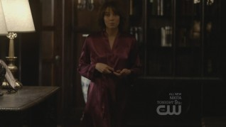 The Vampire Diaries The Sacrifice 9