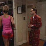 The Big Bang Theory The Vartabedian Conundrum 7
