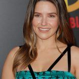 Sophia Bush Incredibles 2 Premiere 224
