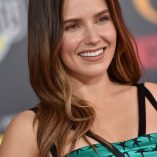 Sophia Bush Incredibles 2 Premiere 268