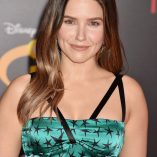 Sophia Bush Incredibles 2 Premiere 278
